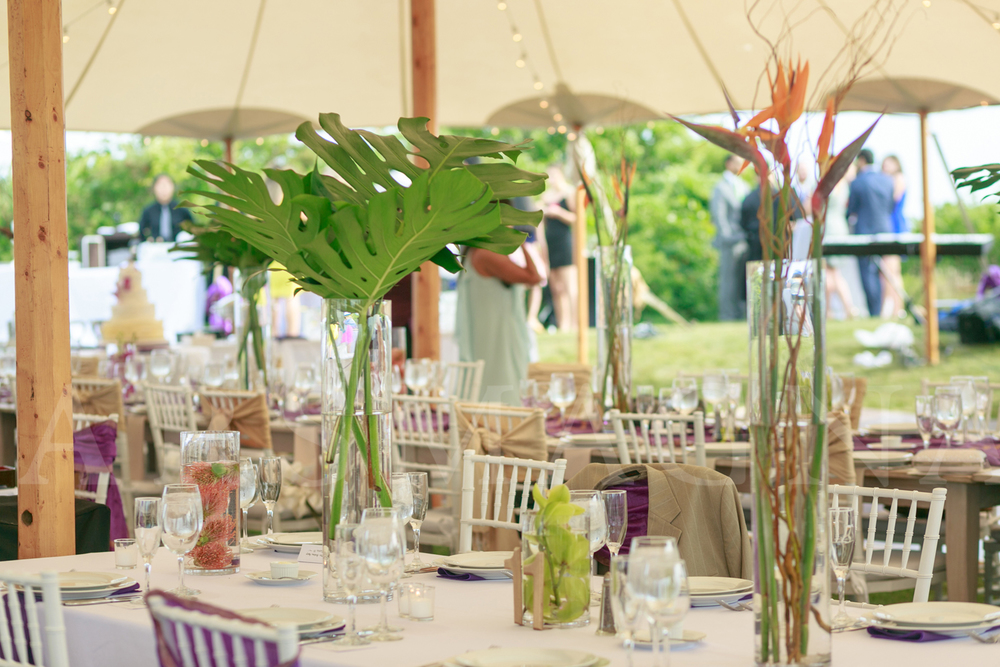 strikingly simple birds of paradise arrangements at reception