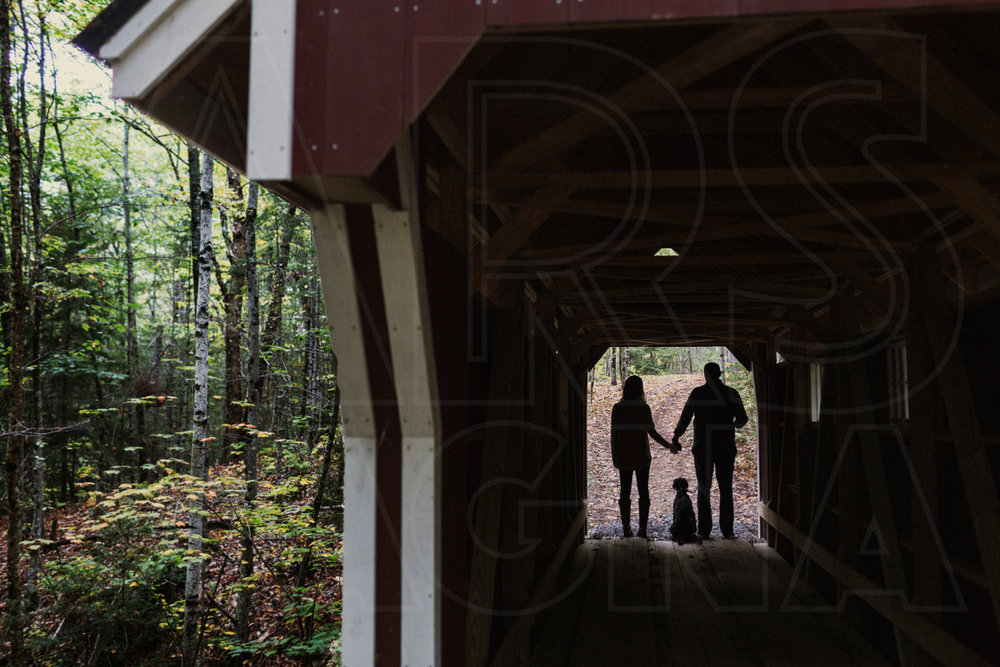 engagement photos with dog covered bridge