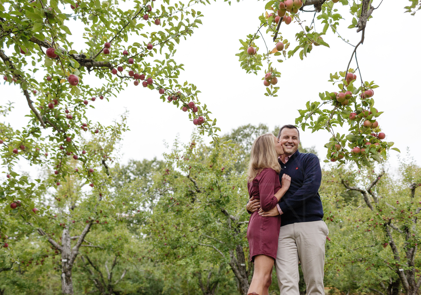 apple picking engagement photographer new england