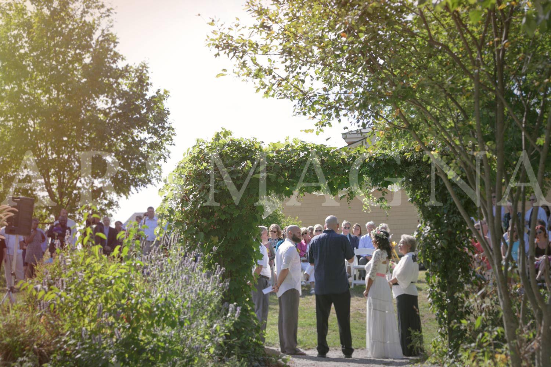 boston nature center wedding photography