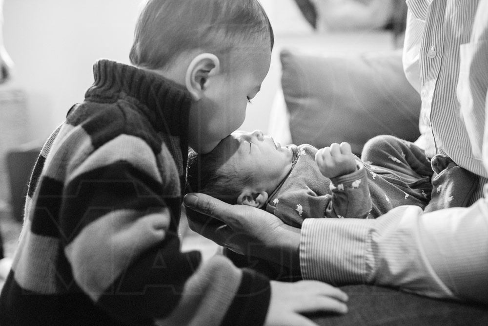 family photography arlington mass newborn