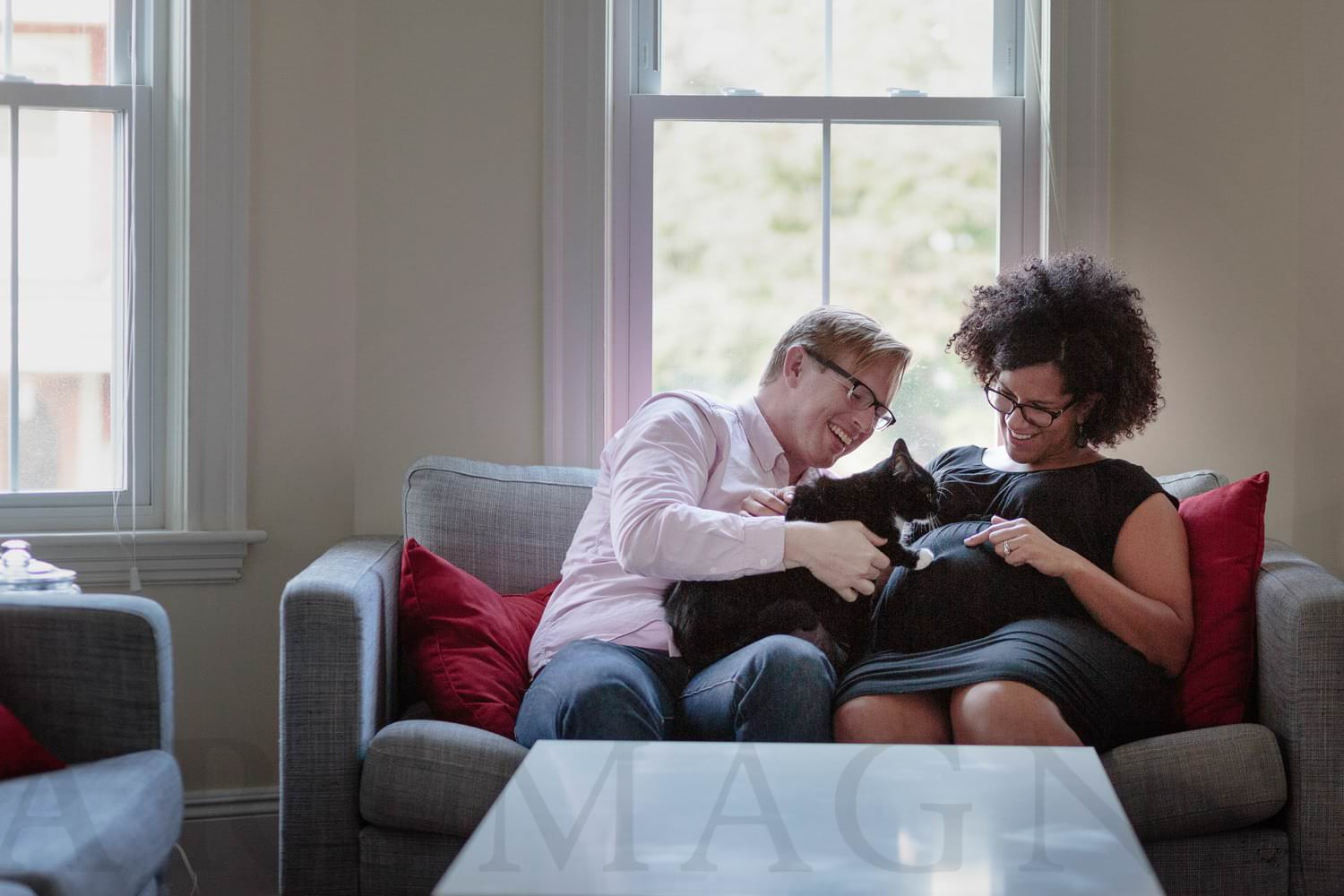 pregnancy photography boston jamaica plain natural light living room with cat