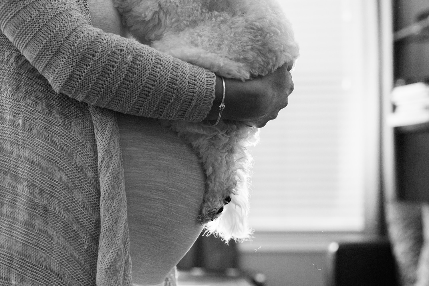 boston family photos in home maternity portraits with dog