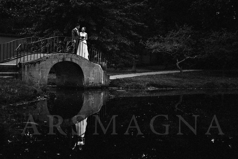 boston prewedding photoshoot brookline park