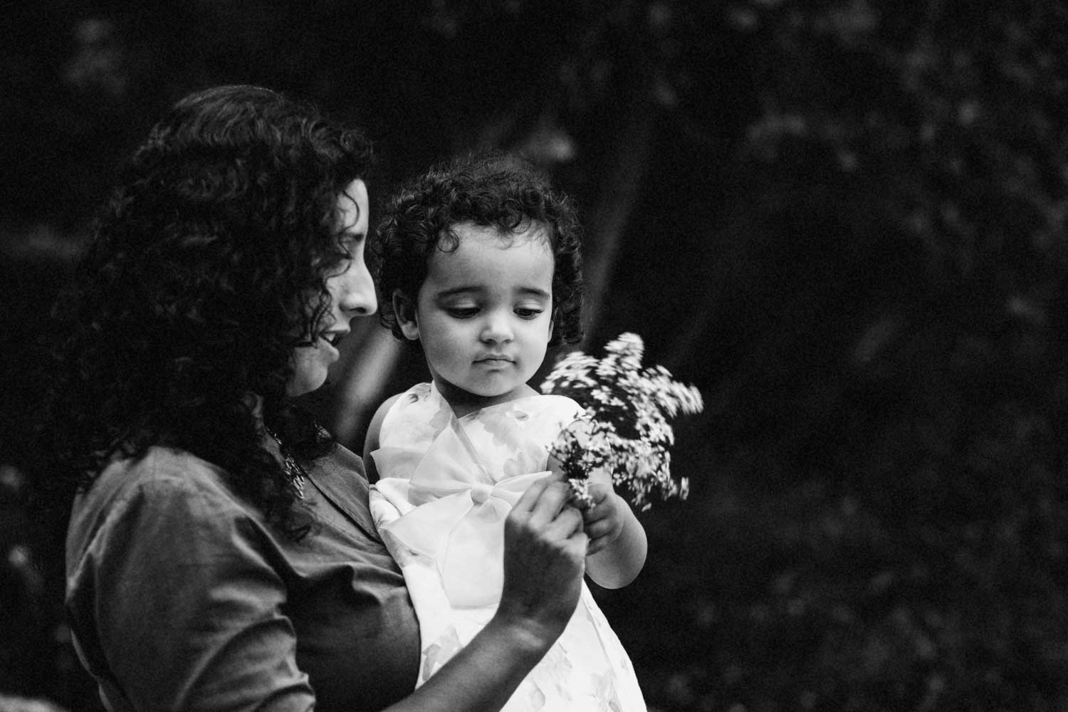 belmont family photography at home portraits multi-racial family photos