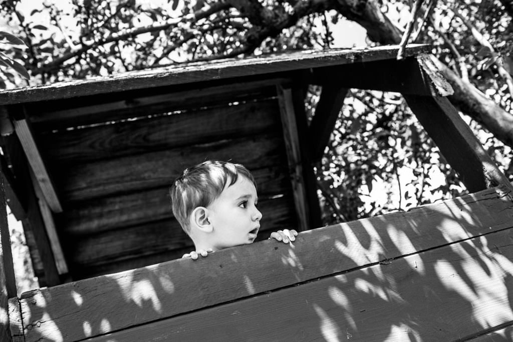 playing at love apple farm ghent ny berkshire hudson valley family photography treehouse