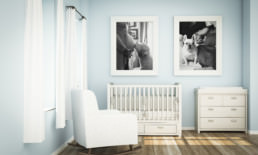 boston family portrait photography dogs nursery baby room inspiration pets