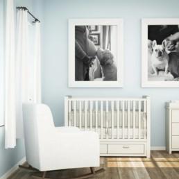 boston family portrait photography dogs nursery baby room inspiration pets